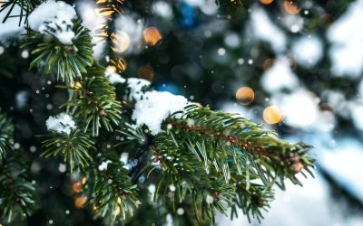 Parfum d'ambiance de Noël