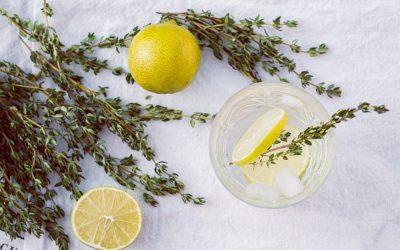 Atelier Cuisine Sauvage – Sirop de plantes